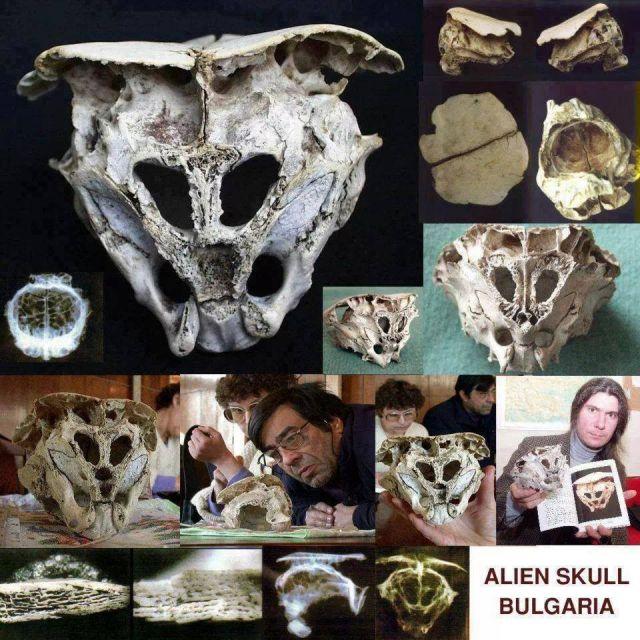 cranio Rhodope na Bulgária