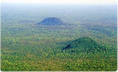 floresta-amazonia