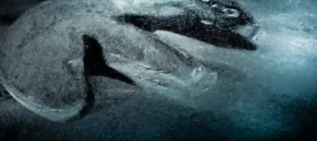 topico_43065_www-agron-com-br_5674_objeto-misterioso-no-mar-baltico-videos-e-imagens